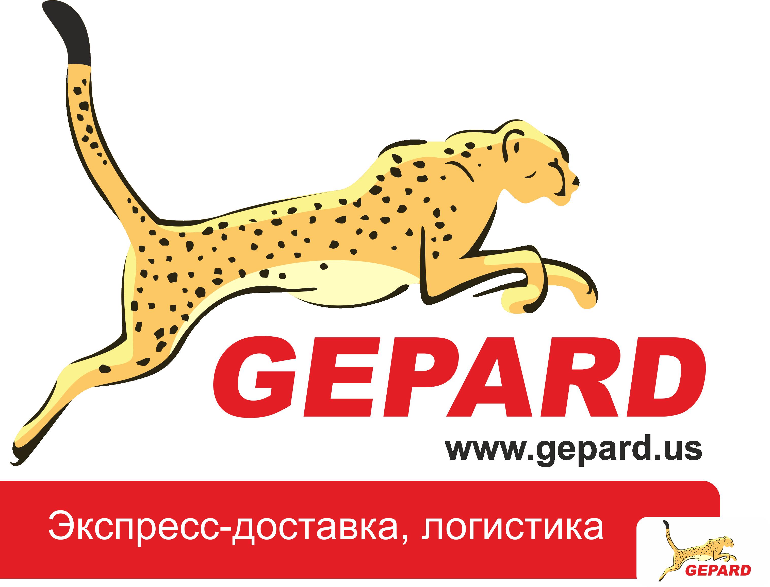 ооо гепард